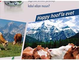 HAPPY HOOF GEL 300ML